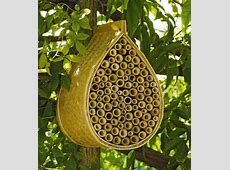 Beehive Plans For Beekeeping On The Homestead Homesteading