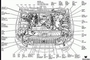 Ford F 8 V8 Engine Diagram Ford F 8 V8 Engine Diagram