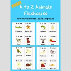 59 Best Free Printable Flashcards Images On Pinterest  Flashcard, Free Worksheets And Craft
