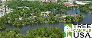 Sustainability | Southern Illinois University