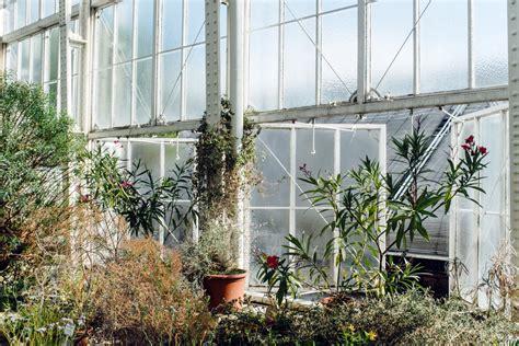 Botanischer Garten Berlin Cafe Lenne by Les Serres Du Jardin Botanique De Berlin L Odeur Du Caf 233