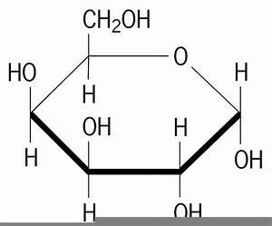 Galactose Diagram
