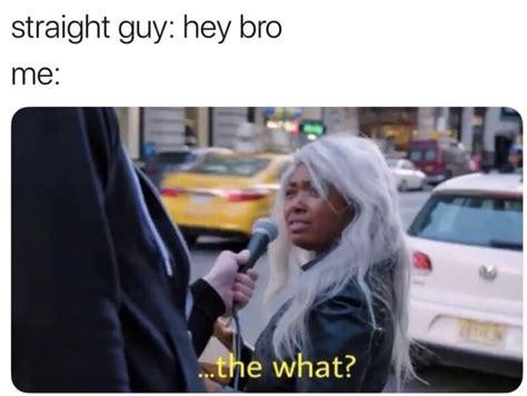 gay memes   equal parts gay  hilarious
