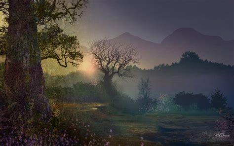 hd early morning mist wallpaper
