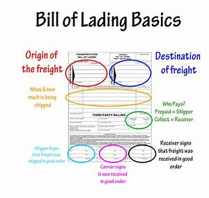 Cac loai van don bill of lading dnh transports for B l documents