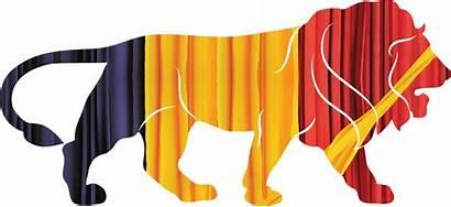 Textile India Export Icon Textiles Lingerie Pace