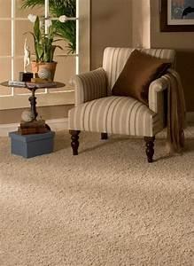 Teppich Komplett Reinigen : wollteppich reinigen wie mache ich das richtig ~ Yasmunasinghe.com Haus und Dekorationen