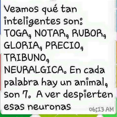 Juego Mental …  Xxxxx Brain…