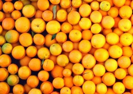 The Top 10 Most Orange Producing Countries In The Entire. Behavior Analysis Certification. Employment Background Check Reviews. Technical Knowledge Management. Reporting Tools Comparison Free Gre Math Prep. Inexpensive Weight Loss Camps. How To Get A Paralegal Certificate Online. Biomedical Engineering Schools In Texas. Annuity Structured Settlement