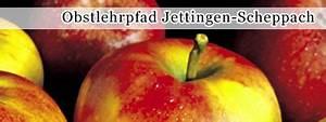 Markt Jettingen Scheppach : markt jettingen scheppach freizeitm glichkeiten ~ Watch28wear.com Haus und Dekorationen