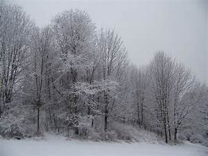 File:Winter Storm December 2007.jpg - Wikipedia