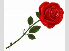 Red Rose Transparent Png Clipart Fresh Image Of Rose