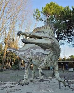 1000+ ideas about Spinosaurus on Pinterest | Tyrannosaurus ...
