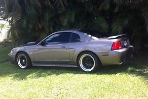 For Sale F/S 02 Mustang Gt CCW Wheels