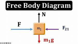 How To Make Free Body Diagram  Urdu  Hindi