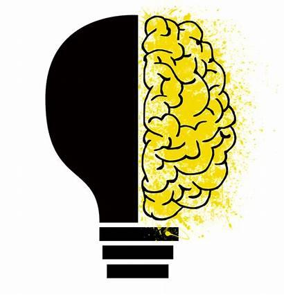 Psychology Components
