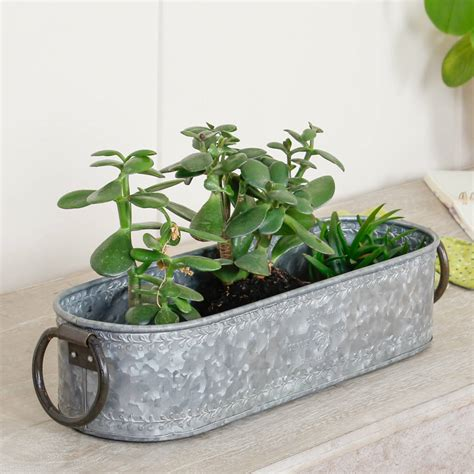 Window Sill Plant Pots by Set Of Three Zinc Oval Windowsill Planters With Handles By