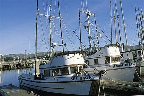 Bodega Bay Fishing Boats by California Bodega Bay Fishing Boats Bodega Harbor