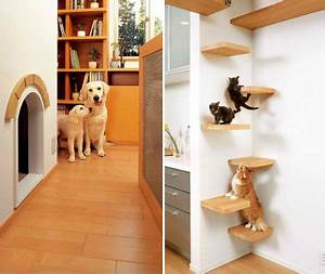 For the dogs these japanese homes are pet playgrounds for Dog room furniture