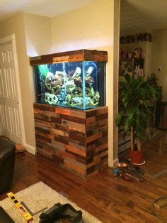 poplar kitchen cabinets vahs 2012 planted tank contest winners announced 1576