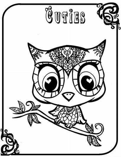 Owl Coloring Owls Sheet Ausmalbilder Animal Eule