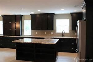 Black Kitchen Cabinets - Traditional - Kitchen - houston