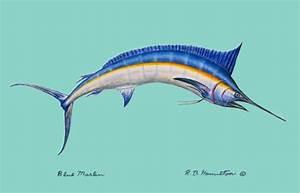 blue marlin images Blue Marlin Floor Mat: Beach Decor