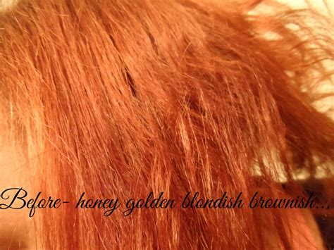 One Only Argan Oil Hair Color Review Medium Red Brown
