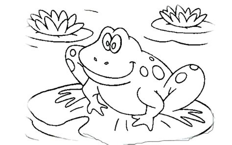 Cycle Of A Frog Coloring Page Cycle Coloring Pages Tadpole Coloring Page Tadpole
