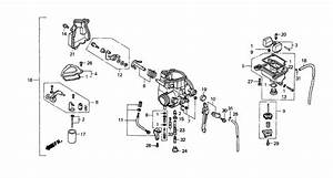 29 Honda Fourtrax 300 Carburetor Diagram