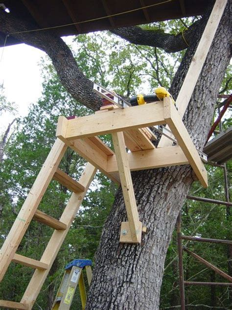 treehouse platform tree house diy tree house designs