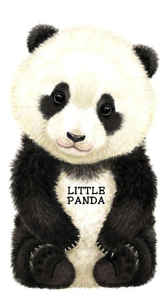panda look at me books series by l rigo 505 | 9780764163395 p0 v2 s1200x630