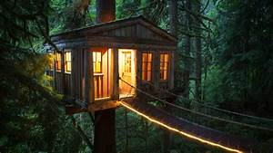 #tree house, #outdoors, #cozy, #warm, #trees, #plants, # ...