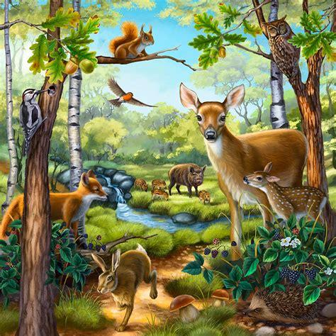 20 Best Animal Habitats Images On Pinterest  Animal Habitats, Forest Animals And Woodland Animals