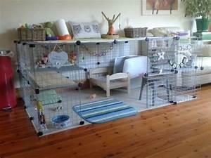 Maison Pour Lapin : 19 magnifiques id es pour fabriquer un enclos lapin ~ Premium-room.com Idées de Décoration