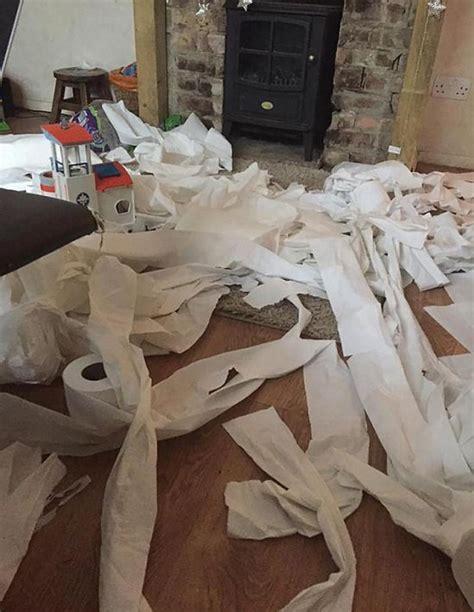 year  kid unravels  rolls  toilet paper