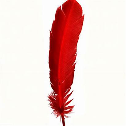 Feather Feathers Indian Clip Clipart Native American