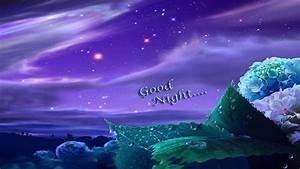 Good Night Flowers Wallpaper Hd - impremedia.net