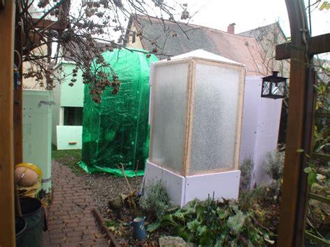 winterschutz für pflanzen selber bauen winterschutz olivenbaum winterschutz andere pflanzen exotenfans forum