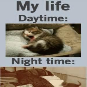 No Sleep Memes - brain y u no let me sleep by unknownjedi meme center