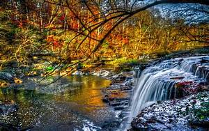 Beautiful Cascading Waterfall Fall River Forest Tree With ...