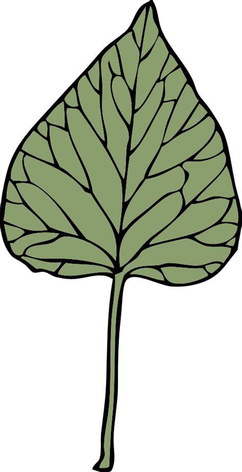 onlinelabels clip art ivy leaf