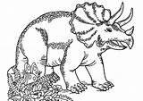 Coloring Dinosaurs Pages Triceratops Funny Printable Children Justcolor sketch template