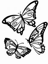 Butterfly Coloring Pages Animals Printable Print sketch template