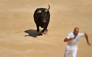 Dash Altcoin Continues Epic Bull Run  Sets Several All