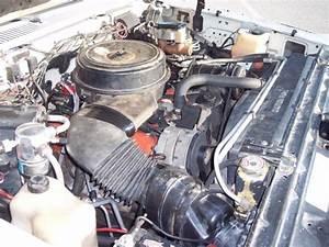 Chevrolet 1991 Fuel Filter Location : 1989 chevy crew cab dually dual wheel pickup truck ~ A.2002-acura-tl-radio.info Haus und Dekorationen