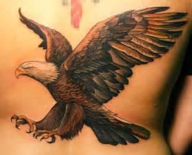 eagle tattoo images  designs ideas