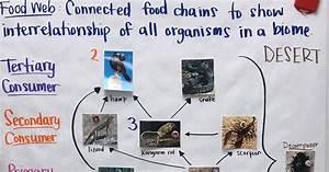 Types Of Rna Chart Mrs Paul Biology Biology 2016 2017 Charts Notes