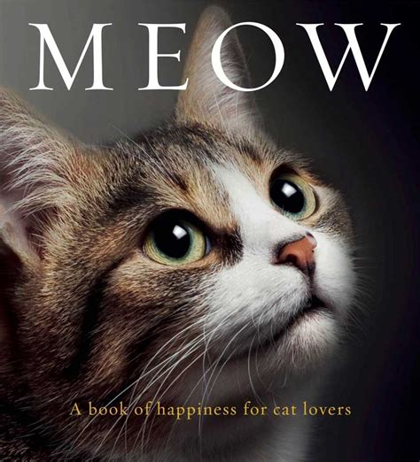 Cat Lover Meme The Cat On My Reviews Meow A Book Of Happiness For