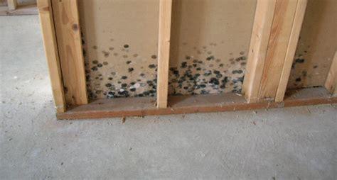 hidden mold  shield waterproofing nybasement